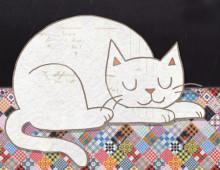 Ein kleiner Helfer in Sachen Katzenalltag